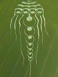ปรากฏการณ์วงธัญพืช หรือ ครอปเซอร์เคิล